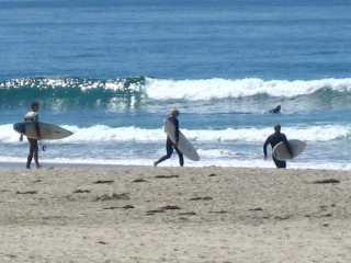 Dana Point Surfers