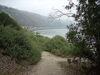 Rincon Point entrance path on a foggy day