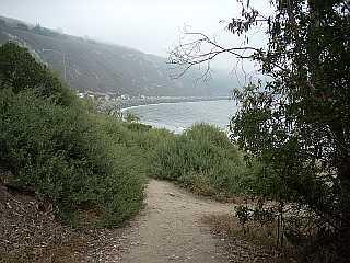 Rincon Point entrance path on a foggy day