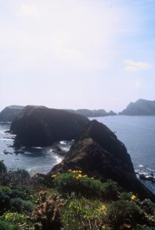Anacapa Island arches