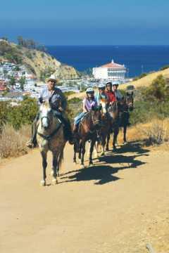 Horeback riding on Catalina Island